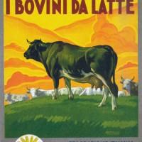 Copertine della collana della Biblioteca per l'insegnamento agrario professionale edita dalla Federconsorzi (Biblioteca comunale Passerini-Landi di Piacenza).