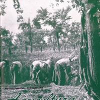 La copertina della rivista «Italia agricola» (1927) della Federconsorzi dedicate alla agricoltura della regione Emilia Romagna (Biblioteca comunale Passerini-Landi di Piacenza).